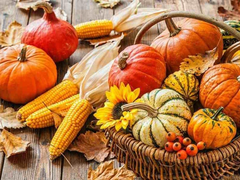 Идеи простых осенних блюд из сезонных овощей и фруктов